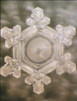 'Thank You' captured in water crystal [Masuru Emoto]