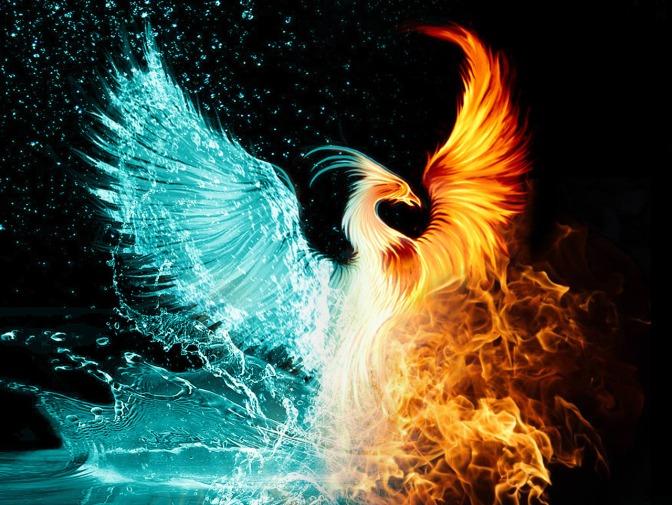 water-fire-phoenix
