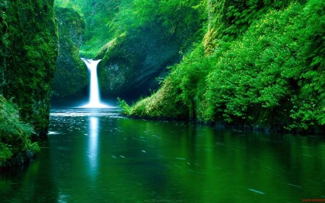 Waterfall in Emerald Landscape