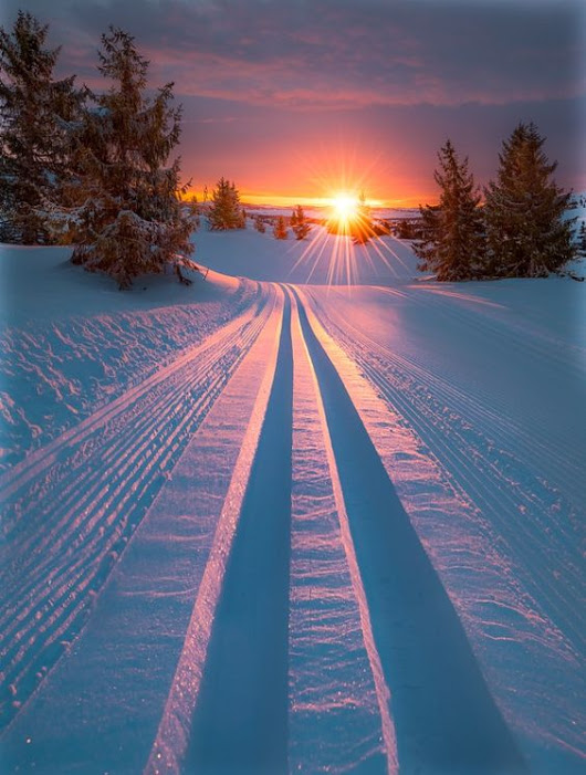 Skiing+into+morning+light+by+Jrn+Allan+Pedersen